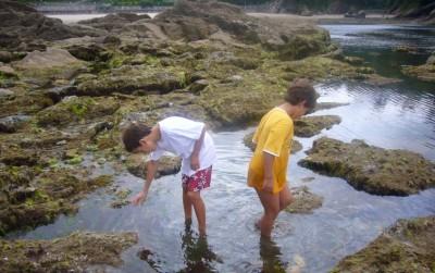 Educación ambiental litoral