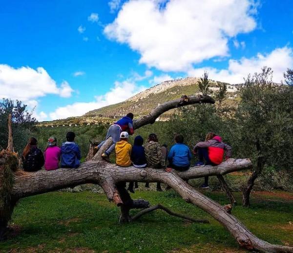 niños mirando la naturaleza