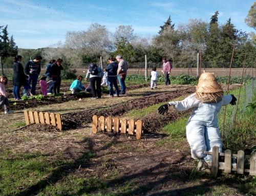 Experiencias para familias en los Centros de Educación Ambiental