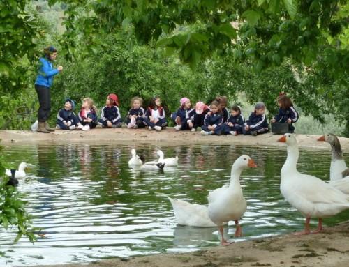 La educación ambiental, más necesaria que nunca
