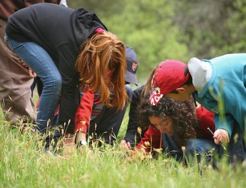 Tejiendo vínculos con la naturaleza y generando pensamiento ecológico en los Centros de Educación Ambiental.